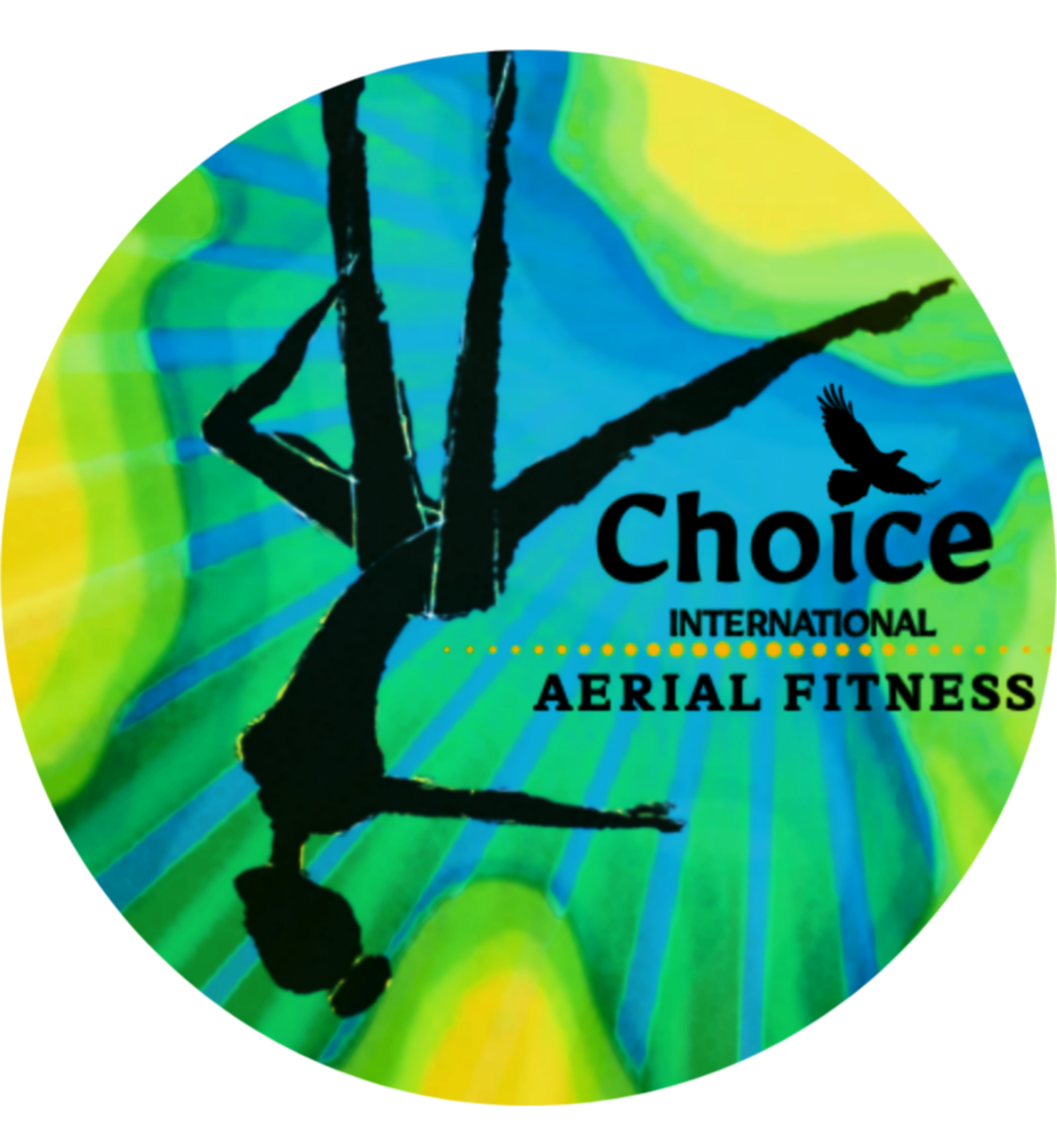 Choice International Aerial Fitness